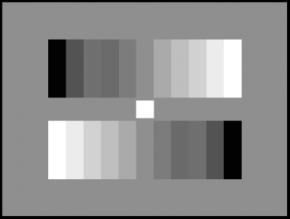 TE83 A Gray Scale Test Chart Reflectance