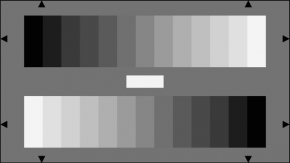 TE223 A Gray Scale Test Chart Reflectance